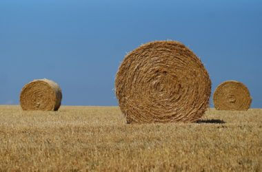 Zemědělci jsou bez sena