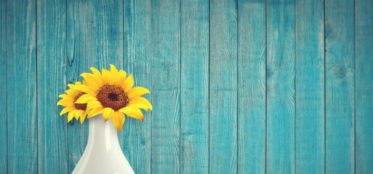 Jak správně zařezávat květiny