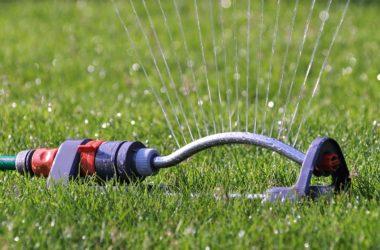 Zahrada jako spotřebitel vody. Jak s vodou na zahradě šetřit?